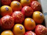 Апельсин из Египта - фото 1