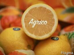 Свежие лимоны - фото 4