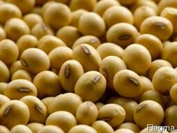 Greenfield Incorporation sells Soybean
