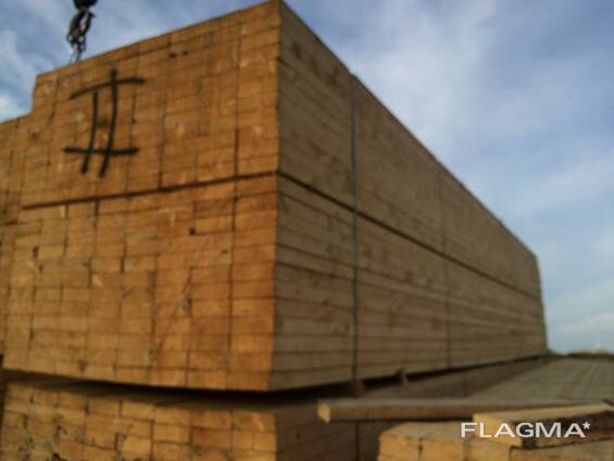 Softwood lumber, birch plywood for export from Russia