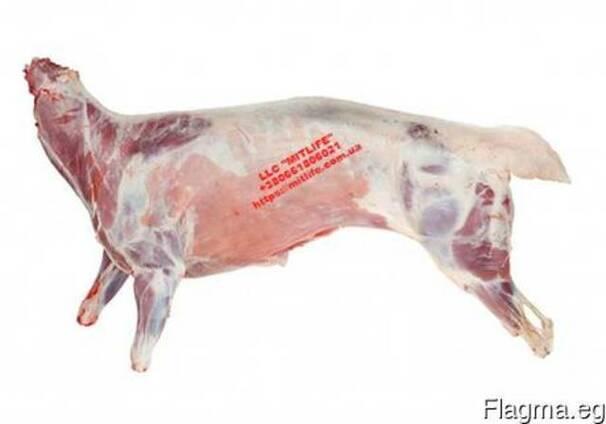 Оптом Баранина Мясо Халяль Украина
