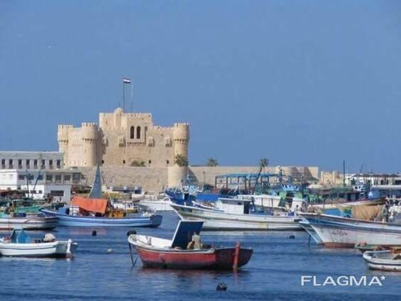 Услуга профессионального египтолога, тур-гида по Александрии