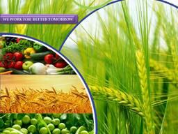 الشركة المصنعة والموردة للمبيدات في جميع أنحاء العالم